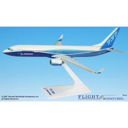 Flight Miniatures 1:200 Boeing B-737-900